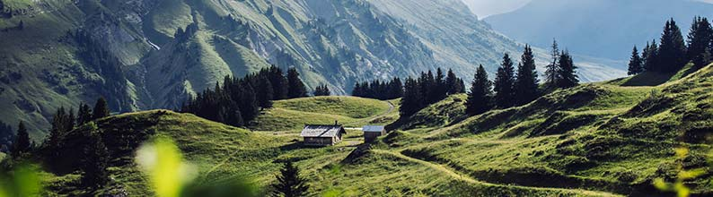 See how we grow our own ingredients, and protect biodiversity, at Le Domaine Clarins in the French Alps