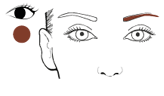 fill-in eyebrows