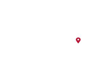 地图上的芒果树
