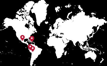 Banana tree on the map