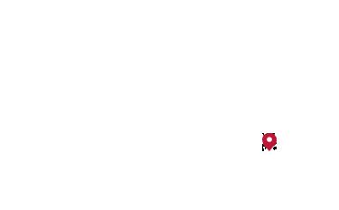 在地图上标注的琼崖海棠