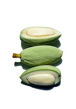 Almond oil ingredient