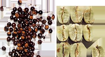 Guaraná orgánico y cafeína vegetal